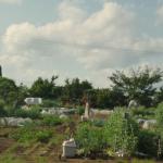 ゆり野農園